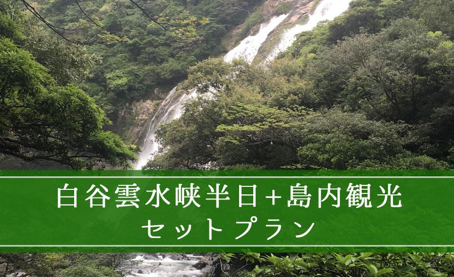 白谷雲水峡半日+島内観光セットプラン